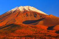 静岡県 水ヶ塚公園 朝焼けに染まる冠雪の富士山と宝永火口