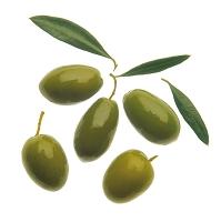 グリーンオリーブ