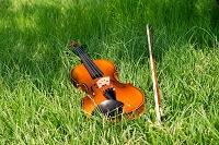 野原のバイオリン