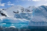 南極 ダンコ海岸