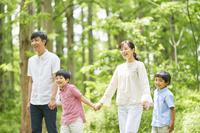 新緑と手を繋いで歩く家族
