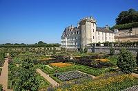 フランス ロワール渓谷 ヴィランドリー城 庭