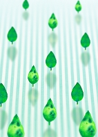葉のエコロジー