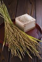枡に入った白米と稲穂