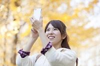 スマートフォンでイチョウを撮影する日本人女性