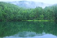 長野県 霧の御射鹿池