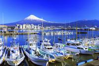静岡県 田子の浦港と富士山