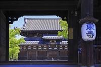 京都府 東寺 南大門と金堂