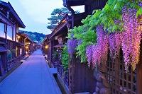 岐阜県 フジの咲く上三之町の夕景