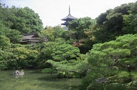 京都府 仁和寺 宸殿の北庭と五重塔