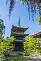 長野県 信濃国分寺三重塔