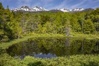 牛留池と乗鞍岳