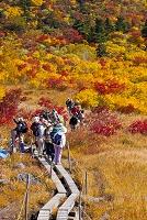 秋田県 栗駒山