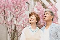 花を見る日本人シニア夫婦