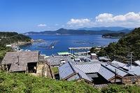 愛媛県 石垣の里と宇和海