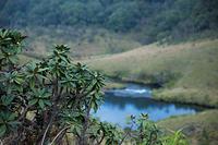 スリランカ ホートン・プレインズ国立公園