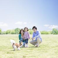 犬と戯れる日本人家族