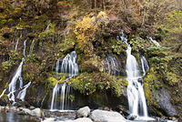 長野県 吐竜の滝