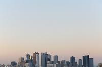 東京都 早朝の新宿ビル群