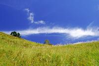 奈良県 初秋の曽爾高原と雲