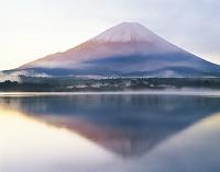富士山 山梨県富士河口湖町 精進湖より