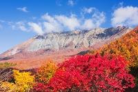 鳥取県 紅葉と大山