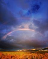 北海道 望岳台から望む美瑛岳方向の山並みと夕方の虹と紅葉の樹林