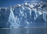 アメリカ合衆国 アラスカ グレーシャーベイ国立公園