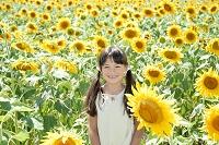 ひまわり畑と少女