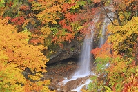 岩手県 八幡平・松川渓谷 滝と紅葉