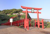 山口県 元乃隅稲成神社の千本鳥居