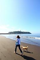 神奈川県 湘南 鵠沼 犬の散歩 江ノ島
