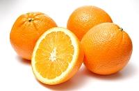 フルーツ オレンジ
