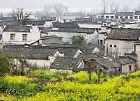 中国 黄山市 屯渓区郊外 安徽古民居群 宏村の家並みと菜の花畑