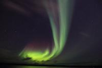 カナダ ノースウエスト準州 イエローナイフ オーロラ グレー...