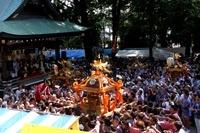 北澤八幡お祭り