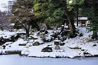 東京都 雪の小石川後楽園