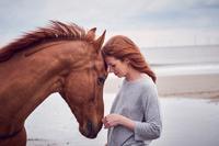 馬と外国人