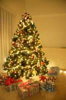 クリスマスツリーの飾られた夜のリビング