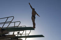男子水泳 飛込競技