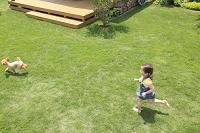 芝生の庭を走る女の子と犬
