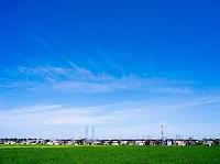 緑の草原と住宅街