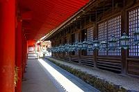 奈良県 春日大社 直会殿の万燈籠