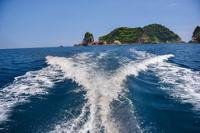 熊野灘の漁船の航跡