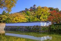 香川県 丸亀城 紅葉と天守閣