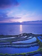 白米千枚田の夕陽