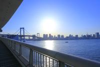 レインボーブリッジ 歩道 東京都