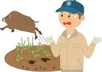 野生鳥獣による農作物被害
