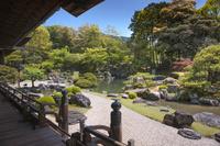 京都府 醍醐寺 三宝院庭園