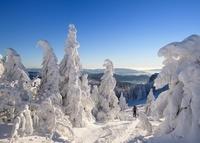 ドイツ スキーヤー